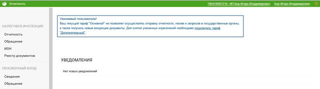 Базовый интерфейс управления сервисом Отчетности