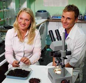 Сотрудники «Грин-ПИКъ» за работой в лаборатории